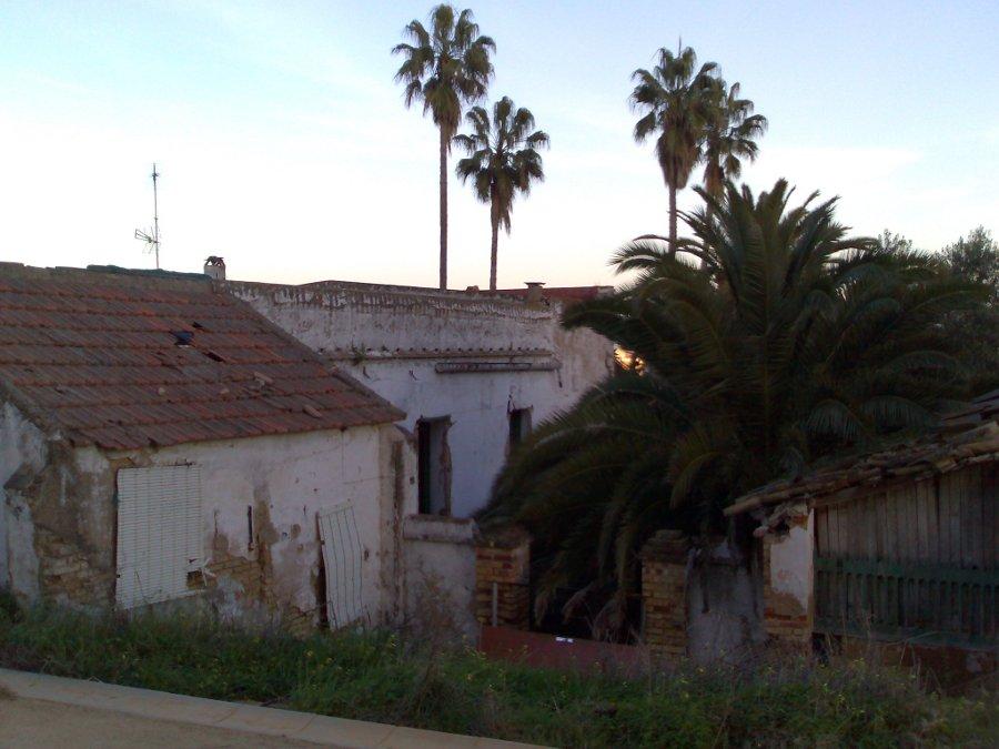 Casa La Morera (2007, foto 75)