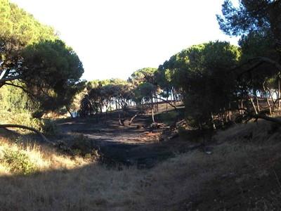 Incendio (2003, foto 11)