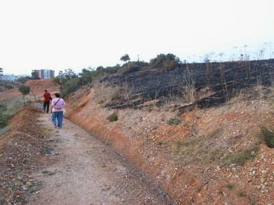 Incendio (2004, foto 90)