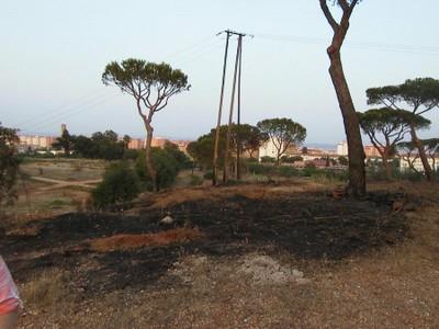 Incendio (2004, foto 78)