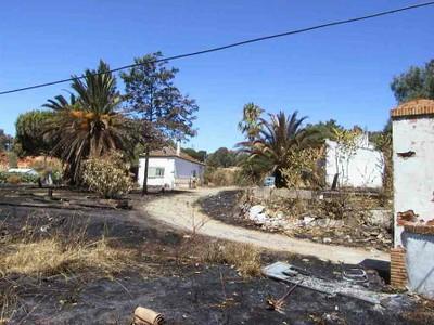 Finca Lugar Nuevo (foto 2)