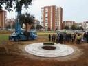 Primer árbol del nuevo Parque Moret (foto 12)