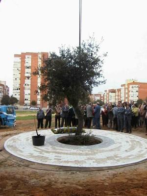 Primer árbol del nuevo Parque Moret (foto 17)