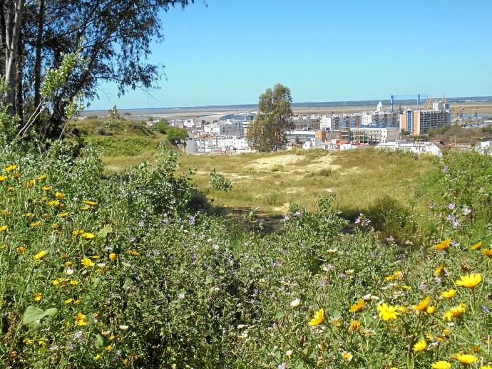 Edusi para Huelva: ¡Todos a una!